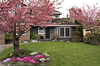 Lawn Care, landscaping and gardening services El Dorado